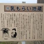 西岡さんの無農薬米の田んぼ