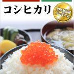 美味しいお米の無農薬・無化学肥料栽培新米 28年福井県産 コシヒカリ「プレミアム」