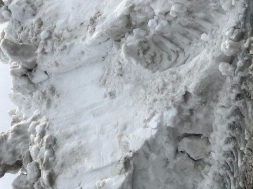 田んぼの雪