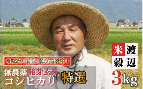 大好評の無農薬・無化学肥料栽培コシヒカリ発芽玄米がふるさと納税で!!
